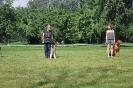Квалификационные соревнования по Обидиенс 10 августа 2013 г.